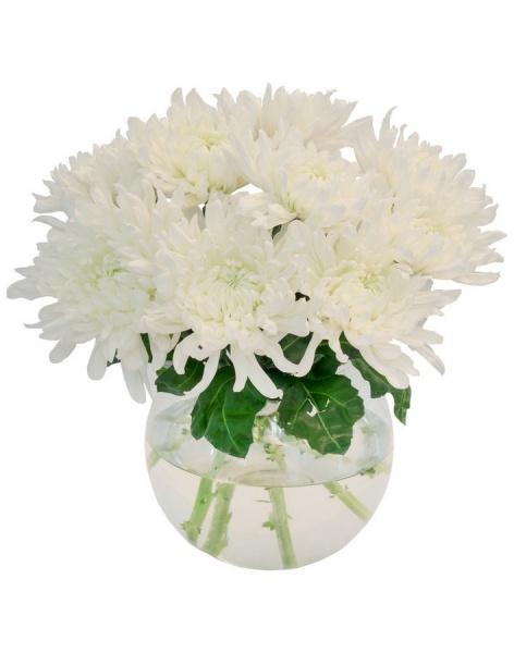 Bouquet of 15 white asters: delivery of flowers in