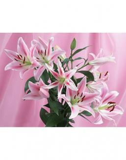 Bouquet of 15 pink lilies | Pink,light-blue shrub roses,lilies,orchids for Holiday,on International Women's Day