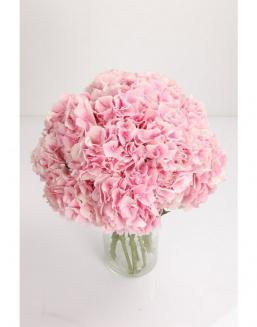 Bouquet of 51 pink hydrangeas | Delivery and order flowers in Aktau