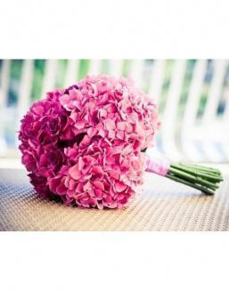 Bouquet of 15 pink hydrangeas | Delivery and order flowers in Aktau