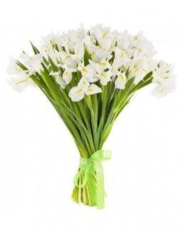 Bouquet of 25 white irises | Delivery and order flowers in Aktau