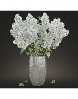 Bouquet of 51 white lilacs | Flowers for Wedding flowers