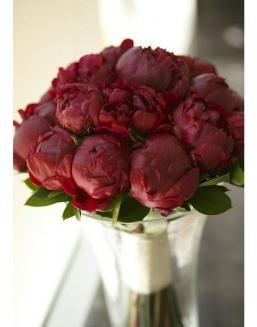 Bouquet of 15 claret peonies | Delivery and order flowers in Aktau