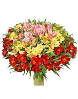 Bouquet of 25 alstromeriyas | Delivery and order flowers in Aktau