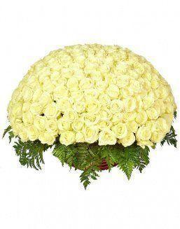 Basket 201 holland roses | Delivery and order flowers in Aktau