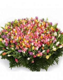 Mix bouquet 501 tulips | 501 flowers flowers