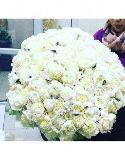 The dream embodiment a bouquet of 151 peonies | Delivery and order flowers in Aktau