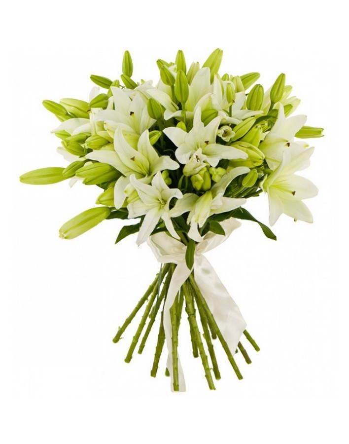 Bouquet of 25 lilies